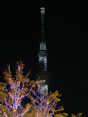 スカイツリー夜木々.jpg